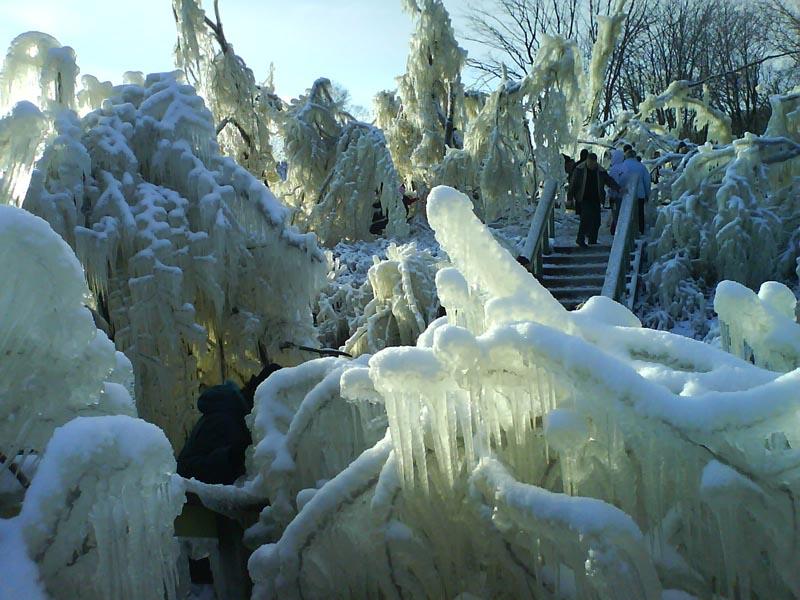 А где-то... уже во всю зима! - 20061106132618476_4