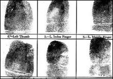 В школах Калифорнии школьников кормят по отпечаткам пальцев - 20061107194610605_1
