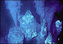 Ученые изучили существа, живущие в кипятке - 20061226204606614_1