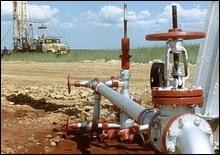 Бойко обсудил участие Украины в проектах по добыче газа в России - 20070226201457126_1