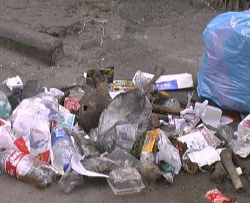 Страшная находка в одном из киевских дворов - 2007041711521297_1