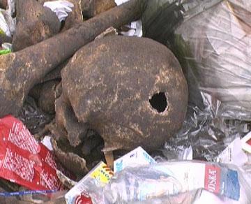 Страшная находка в одном из киевских дворов - 2007041711521297_2