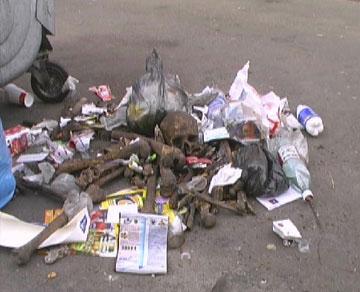 Страшная находка в одном из киевских дворов - 2007041711521297_4
