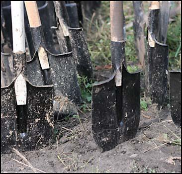 Не забудьте посадить сегодня дерево - 20070421131212145_1