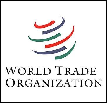 Украина уверенно идет в ВТО - 20070423205431183_1