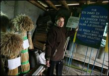 В тарелках украинцев все чаще оказывается ГМО - 20070518223155682_1