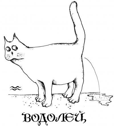 Кошачий гороскоп - 20070704103508641_12