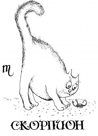 Кошачий гороскоп - 20070704103508641_8