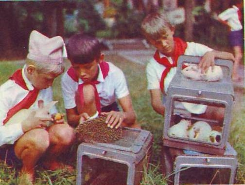 Не так уж и давно..: Пионеры СССР (20 фото) - 20070927232809523_8