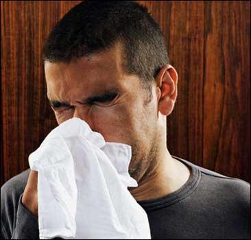 В Киеве обнаружили 8 вирусов гриппа