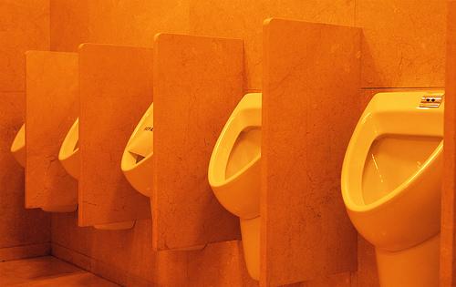 Сегодня - День туалета! - 20071119191101416_1