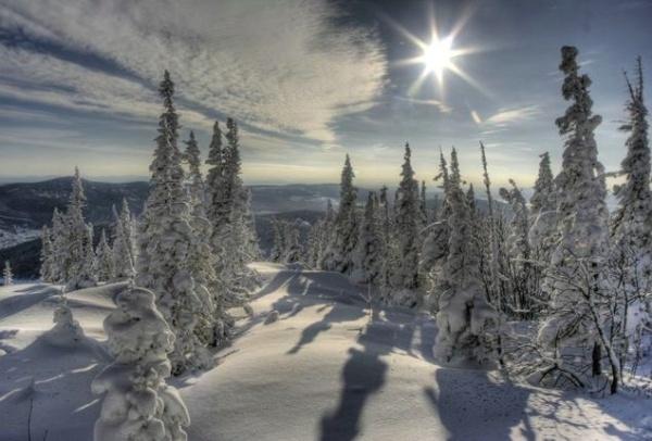 Зимние виды (25 фото) - 20071126162851121_1