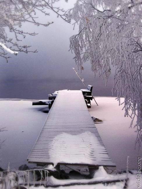 Зимние виды (25 фото) - 20071126162851121_10