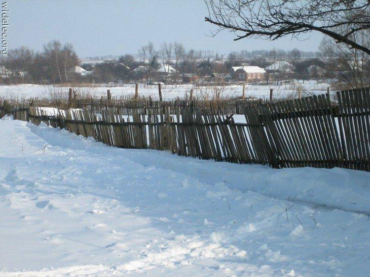 Зимние виды (25 фото) - 20071126162851121_11