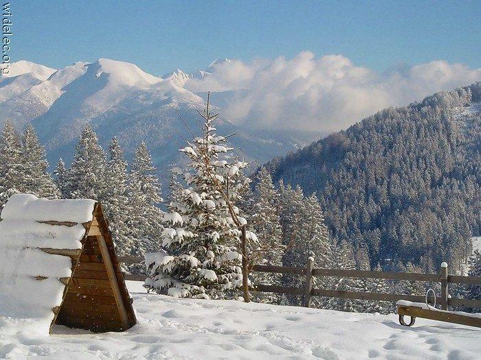 Зимние виды (25 фото) - 20071126162851121_2