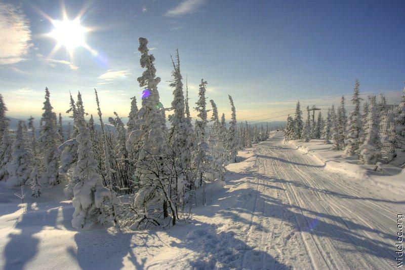 Зимние виды (25 фото) - 20071126162851121_23