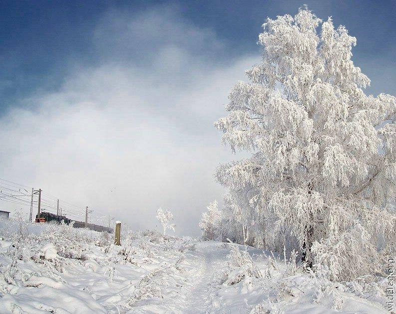 Зимние виды (25 фото) - 20071126162851121_25