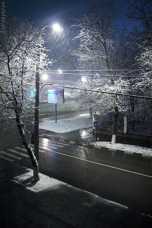 Зимние виды (25 фото) - 20071126162851121_9