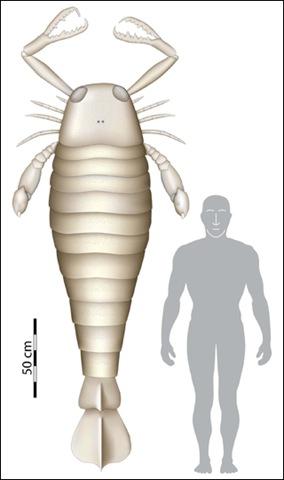 Древние скорпионы были больше автомобиля - 20071128221905182_1