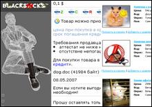 Составлен рейтинг самых курьезных интернет-магазинов Европы - 20071211223531160_1