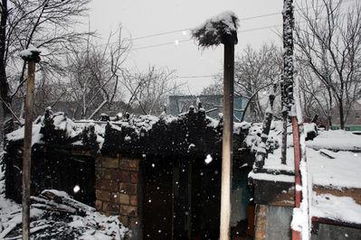 Вчера вечером группа неизвестных сожгла дачу Олега Шкота - 20071214221417480_3