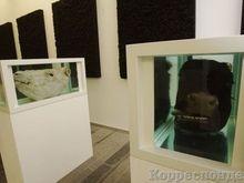 PinchukArtCentre продлевает выставку Reflection до 24 февраля - 20071221152221921_1