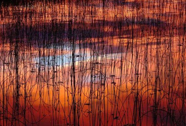 Лучшие фото National Geographic 2007 — Пейзажи  - 20071221160543202_10