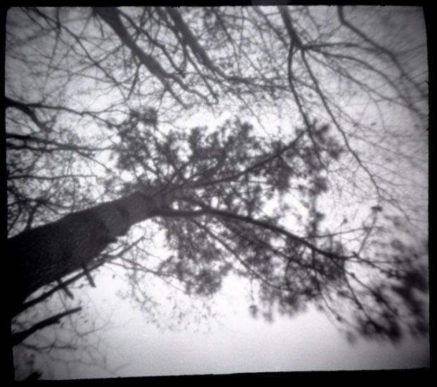 Фотоаппарат своими руками - 20080114115709294_14
