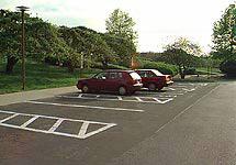 Киевляне будут парковаться по талонам - 2008012013281111_1