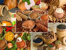 Британцы создали биодобавки, подавляющие аппетит  - 20080204105603150_1