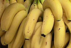 В Австралии авто будут заправлять банановым метаном? - 20080213201145547_1
