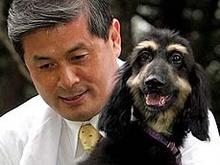 Корейцы начали коммерческое клонирование животных - 20080219095332267_1