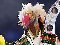 Игрушечный индюк может обойти Ани Лорак на Евровидении-2008 - 20080226225533814_1