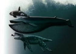Найдены останки крупнейшей морской рептилии - 20080228230257135_1