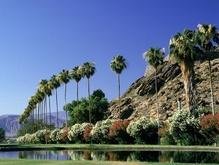 В Калифорнии произошло землетрясение - 20080501112027319_1