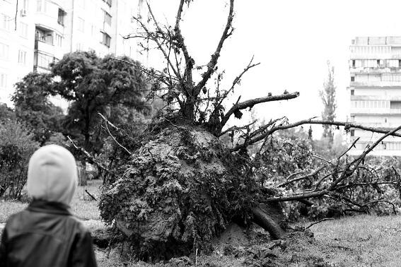 4 июня  2012 после дождя на Оболони (5 фото) - 4-ijunja-2012-posle-dozhdja-na-oboloni-5-foto_1