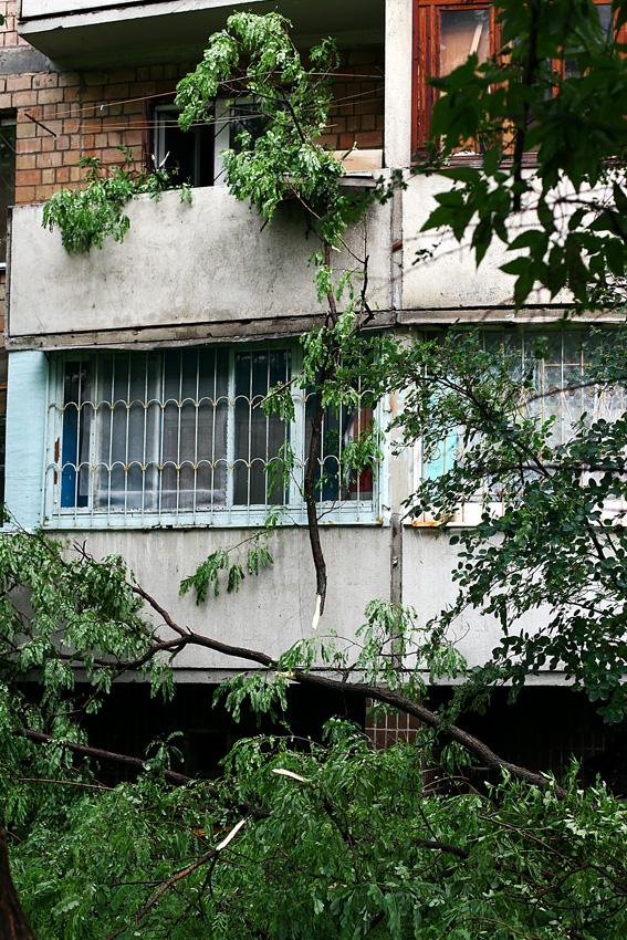 4 июня  2012 после дождя на Оболони (5 фото) - 4-ijunja-2012-posle-dozhdja-na-oboloni-5-foto_2