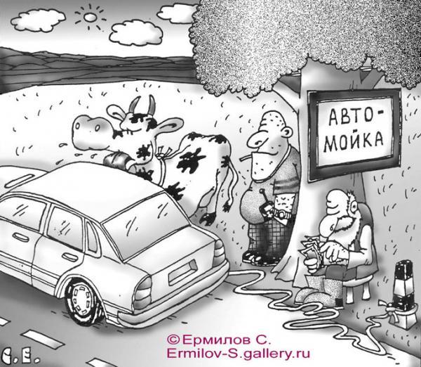 Автомойка с коровами - Avtomojka-s-korovami-mart2009_1