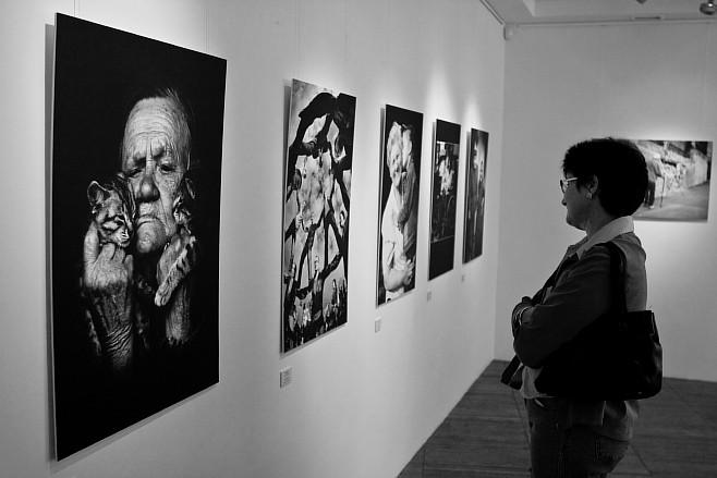 """Фотовыставка """"Украина - страна для каждого"""" - Fotovystavka-Ukraina-strana-dlja-kazh_1"""