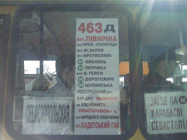 "Вернули ""непопулярный"" 463 маршрут - Vernuli-nepopuljarnyj-463-marshrut_1"
