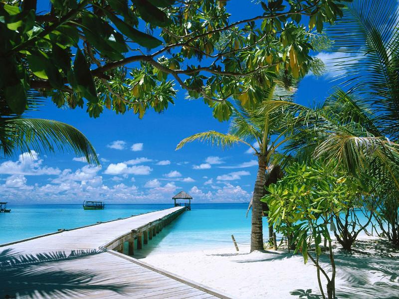 Мальдивские острова - лучший выбор для круглогодичного отдыха - maldivskie-ostrova-luchshij-vybor-dlja-kruglogodichnogo-otdyha_1