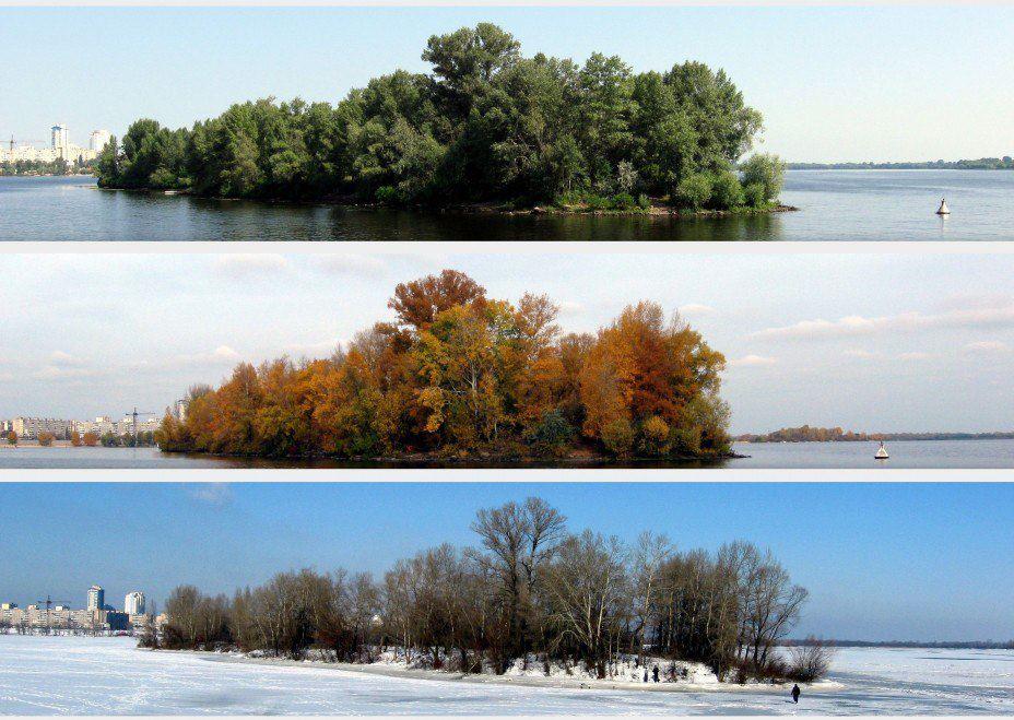 Оболонь: лето, осень, зима (фото) - obolon-leto-osen-zima-foto_1