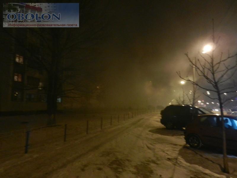 Пожар на Богатырской (11 фото) - pozhar-na-bogatyrskoj-11-foto_3
