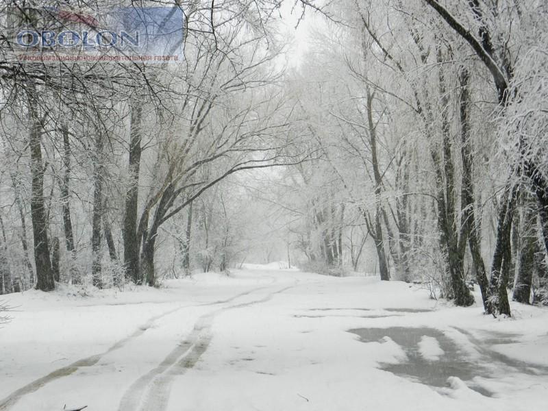Зимняя Оболонь, февраль 2013 (26 фото) - zimnjaja-obolon-fevral-2013-26-foto_12