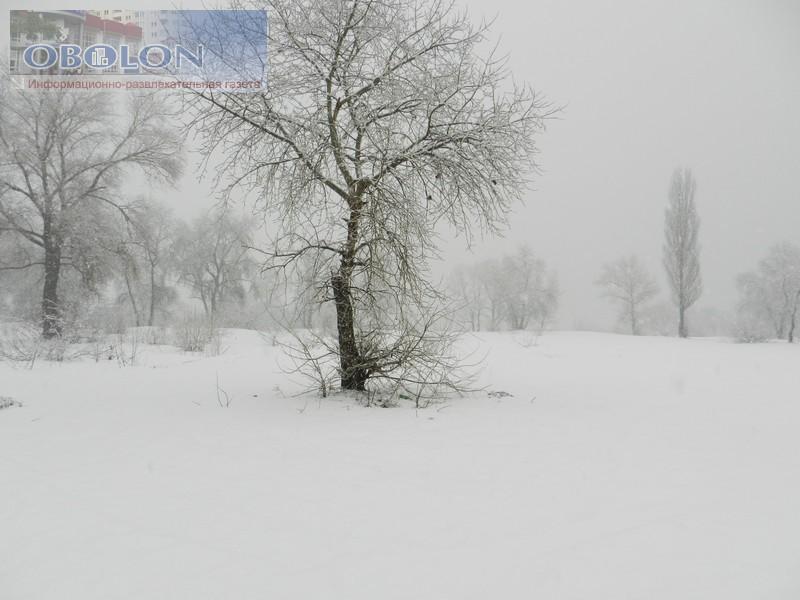 Зимняя Оболонь, февраль 2013 (26 фото) - zimnjaja-obolon-fevral-2013-26-foto_16