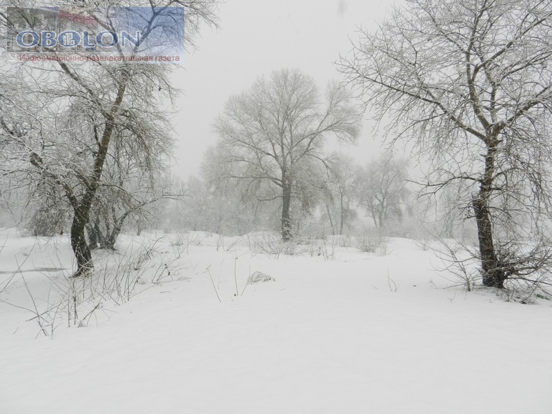 Зимняя Оболонь, февраль 2013 (26 фото) - zimnjaja-obolon-fevral-2013-26-foto_17