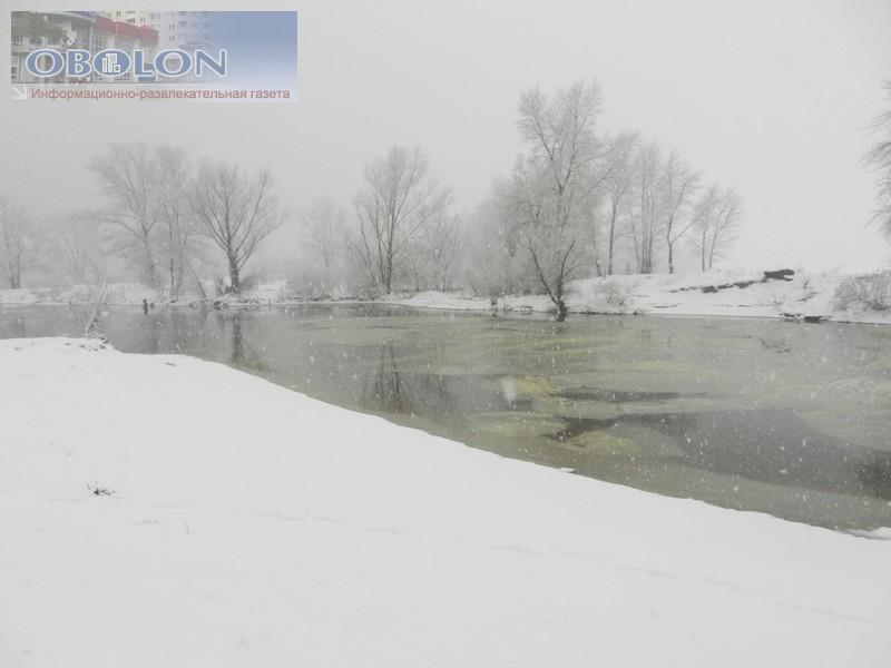 Зимняя Оболонь, февраль 2013 (26 фото) - zimnjaja-obolon-fevral-2013-26-foto_19