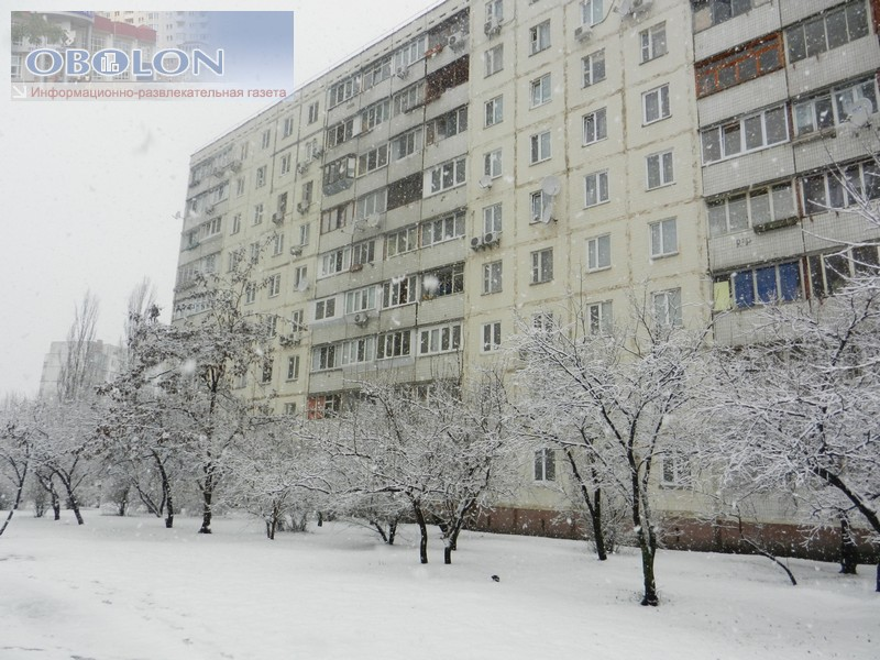 Зимняя Оболонь, февраль 2013 (26 фото) - zimnjaja-obolon-fevral-2013-26-foto_2