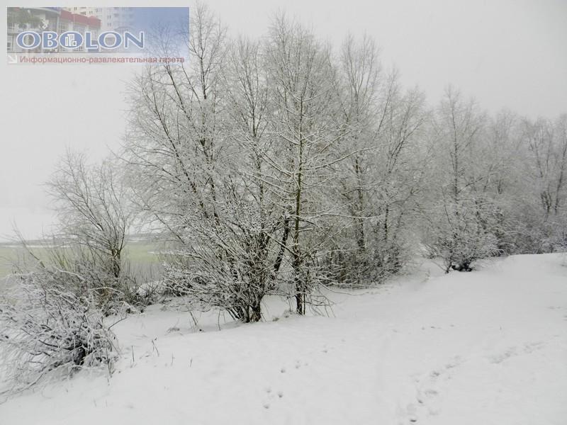Зимняя Оболонь, февраль 2013 (26 фото) - zimnjaja-obolon-fevral-2013-26-foto_20