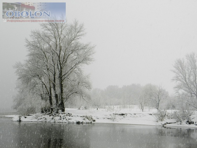 Зимняя Оболонь, февраль 2013 (26 фото) - zimnjaja-obolon-fevral-2013-26-foto_21